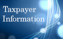 Search Taxpayer Information